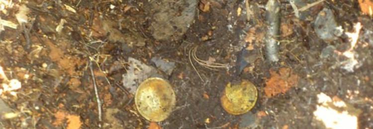 Кладовые монеты