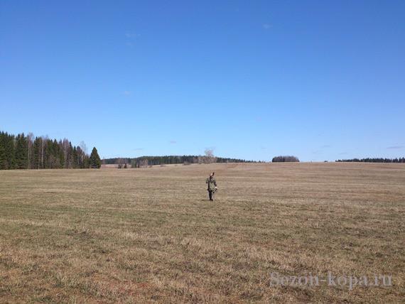 На горизонте заветное поле